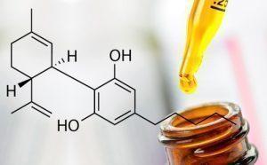 cbd shop cbd oil hemp weed oil medihemp azoth cbd oil cannabidiol